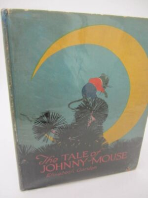 The Tale of Johnny Mouse (1920) by Elizabeth Gordon